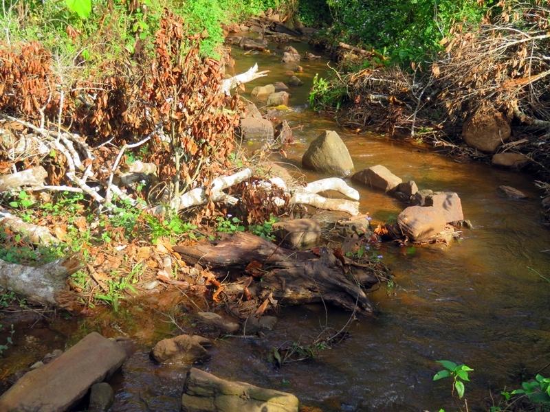Gebirgsbach zur Frischwassergewinnung